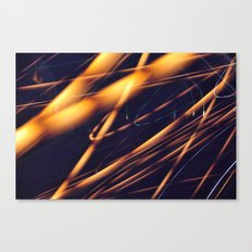 Long Exposure X Canvas Print