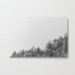 INTO THE WILD VI / Mt. Tamalpais Metal Print
