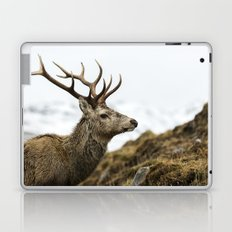 Royal Red Deer Stag Laptop & iPad Skin