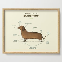 Anatomy of a Dachshund Serving Tray