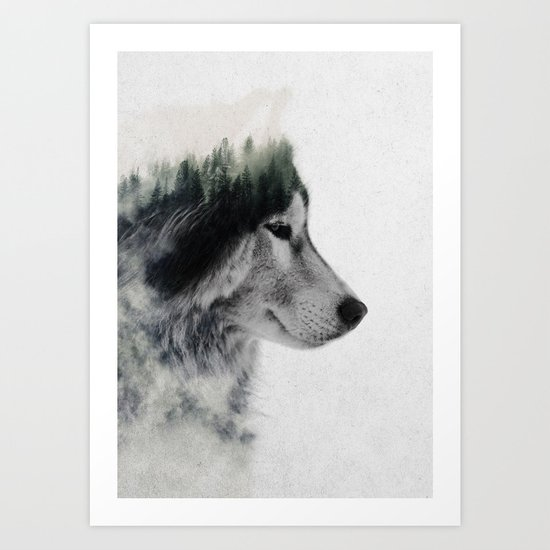 Wolf Stare by andreaslie