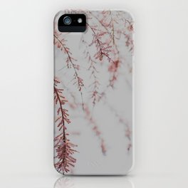 Soft Dusty Pink Lullaby iPhone Case