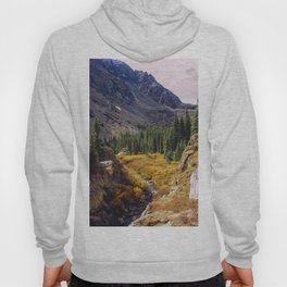 Autumn in Colorado Hoody