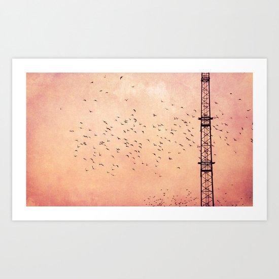 fly..fly.. Art Print