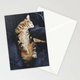 relaxed cat Stationery Cards