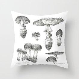 Amanita Muscaria Mushroom Study Throw Pillow