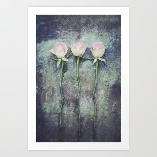 Three Roses IV Art Print