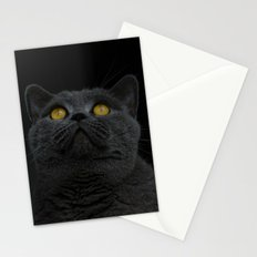 Look Up - Black Cat Stationery Cards