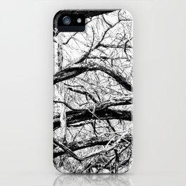 Mangled Tangled Woods. Diamond Head Crater B&W iPhone Case