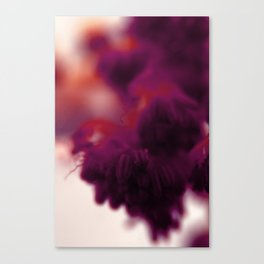 A.L.N. #03 Canvas Print