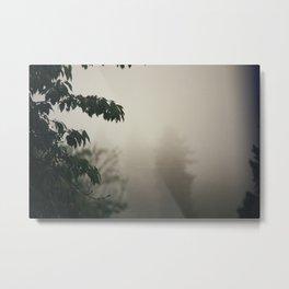 Beyond the Mist Metal Print
