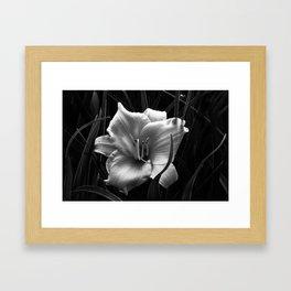 Flower Black and White Framed Art Print