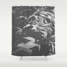 Legalize It Shower Curtain