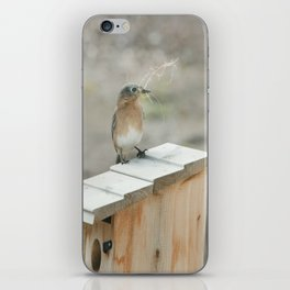 Build Your Nest iPhone Skin