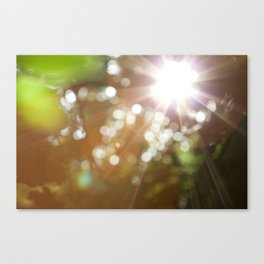 Finding the Light Abstract Photography Canvas Print
