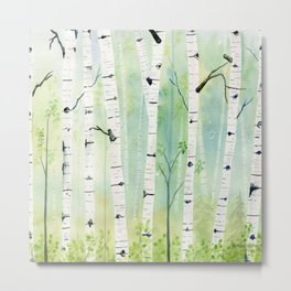 Birch Trees 2  Metal Print