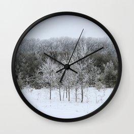 Beautiful Ice Storm Wall Clock