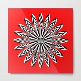 Zebra Zinnia on Red Metal Print