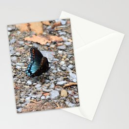 Red-spotted Purple Admiral Stationery Cards