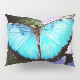 Morpho Bleu Pillow Sham