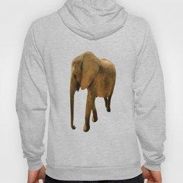 Wildlife big Elephant Hoody