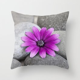 Zen Pink Daisy Pebble Still Life Throw Pillow