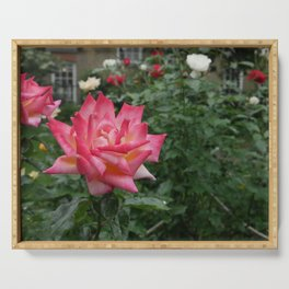 An English Rose Serving Tray