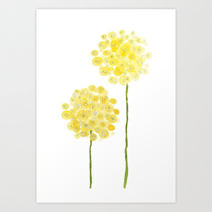 two abstract dandelions watercolor Kunstdrucke