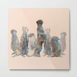 Meerkats Meeting Metal Print