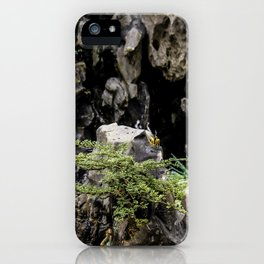 Charming Miniature Garden at the the Ngoc Son Temple at Hoan Kiem Lake in Hanoi, Vietnam iPhone Case