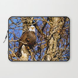 Bald Eagle (9279) Laptop Sleeve