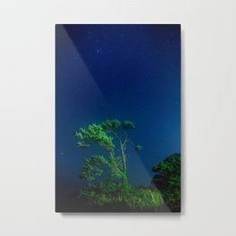 Solitary Under the Stars Metal Print