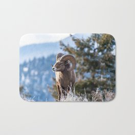Ram male bighorn sheep standing on the edge of a cliff with frosty winter grasses. Bath Mat