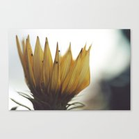 crown Canvas Prints featuring Crown by BURNEDINTOMYHE∆RT♥