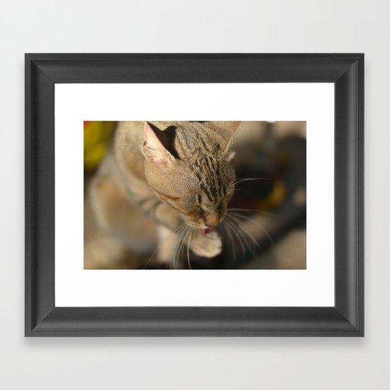 Lickat Framed Art Print