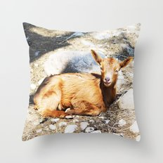 WHEN LIFE IS WONDERFUL Throw Pillow