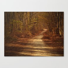 The path to nowhere Canvas Print