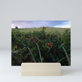 American Wilderness - Salt Marsh Foilage Mini Art Print