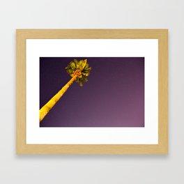 Calm Palm  Framed Art Print