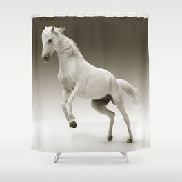 White Mare Horse Shower Curtain