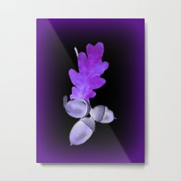 Acorn in Purle. Metal Print