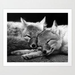 FOX COUPLE Art Print