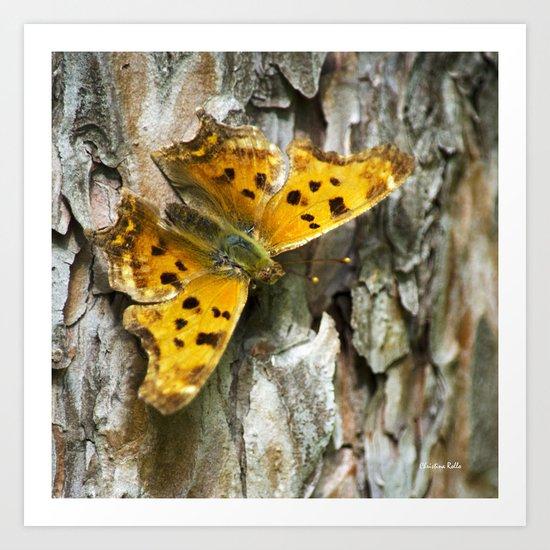 Butterfly on Bark Art Print