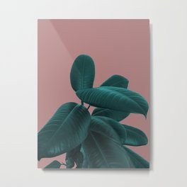 Ficus Elastica #9 #AshRose #decor #art #society6 Metal Print