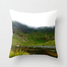 Back Garden  Throw Pillow