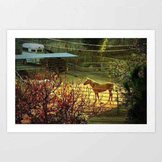 landscape with a horse Art Print