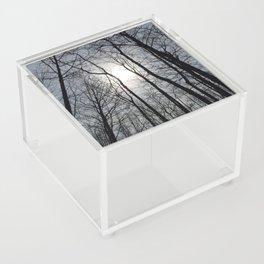 White Sky, Black Trees Acrylic Box