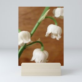 lily of the valley II Mini Art Print