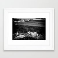 lamb Framed Art Prints featuring Lamb by BethWold