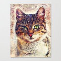 Cat Saba Canvas Print